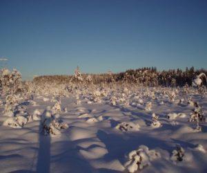 Tämän viikon hiihtokouluun muutos